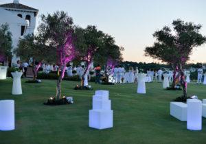 Event-White